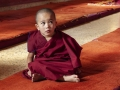 Youngest monk at Tashi Lhunpo.