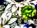 Mixed-art_Digital-manipulation
