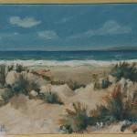 le dune 40x30