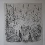 """PdiA""""La natura"""" 33x37 acquaforte"""