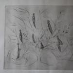 """PdiA""""Noi e l'albero"""" 37x33 acquaforte"""