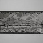 "PdiA""fossile"" 25x11 acquaforte"