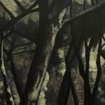 Samantha Cianchi, Gli Alberi 2013 50x120 cm Tecnica mista, Acrilico inciso