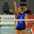 bisonte volley