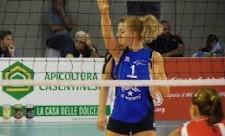 bisonte volley