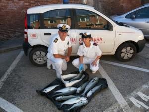 cagliari capitaneria di porto livorno - photo#34