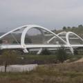 ponte leonardo