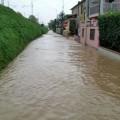alluvione carrara