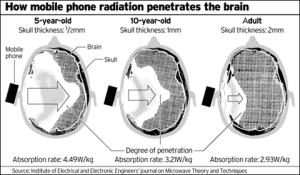 mobile phone brain