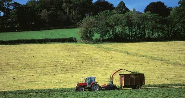 agricoltura-imu-agricola