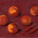 Pomodori invernali 18 x 24