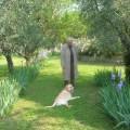 """Il poeta fiorentino Renzo Gherardini con il cane e i fiori in uno scenario """"georgico""""."""