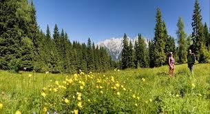 turismo natura