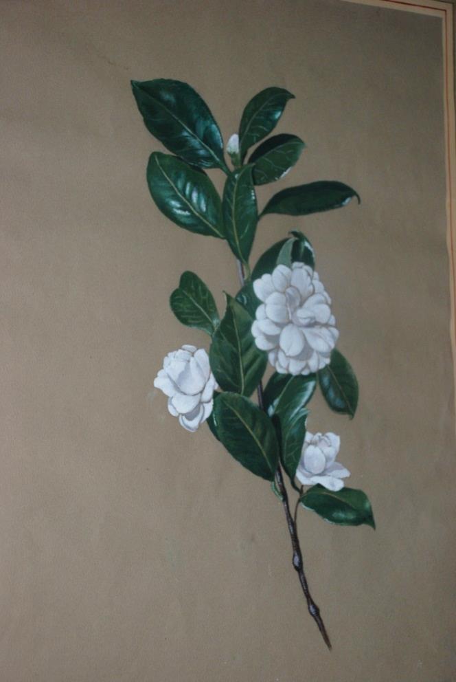 Dipinto di fiori di Eleonora Pandolfini.
