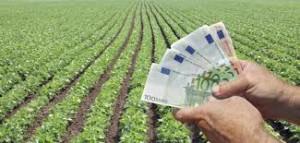 agricoltura PIL