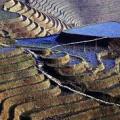 cinauno Terrazze di riso nel Guangxi, regione autonoma nel sud della Cina