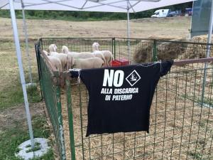 fiera agirola valgia pecore e no