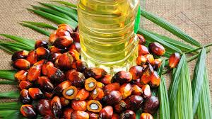 olio palma
