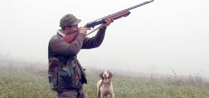 caccia_cane