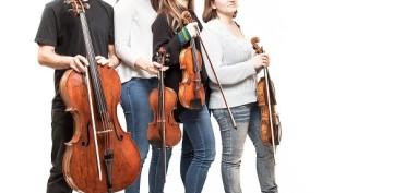 quartetto-liskamm-2