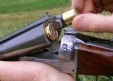 caccia-cinghiale