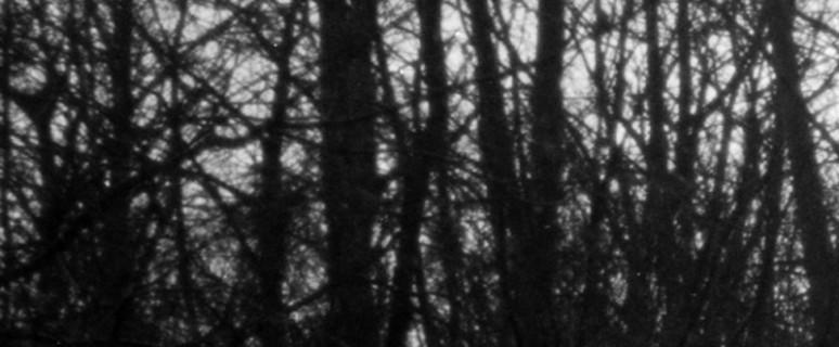 enrico-fico-ho-creduto-di-nuotare-nel-tempo-dettaglio-a-chacun-son-enfer-2014-2016-stampa-digitale-da-fotografia-analogica-e-testo-25x46-cm