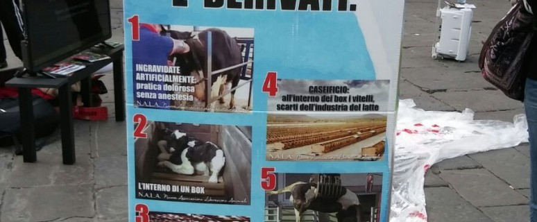 animalisti latte