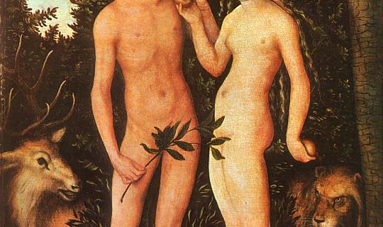 medicina genere2