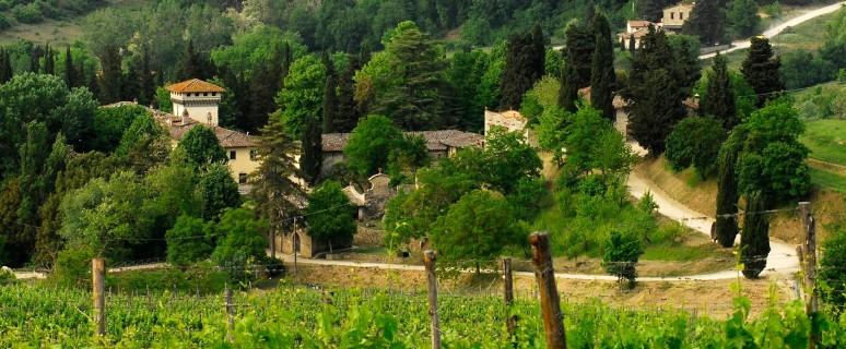 villa calcinaia