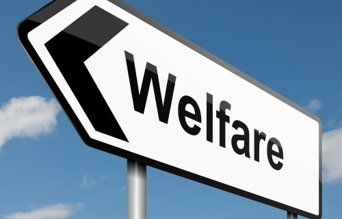 welfare-500x500_2