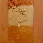 Il vello d'oro, 2005-2017. Tempera acrilica e resina poliuretanica su legno.