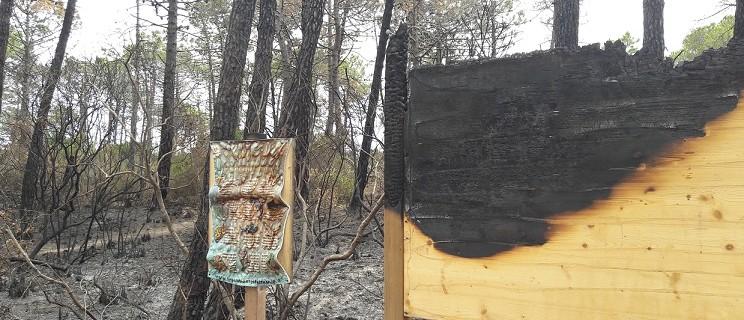 incendio roccamare 23