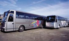 bus firenze