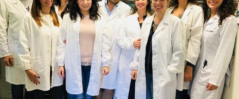 ricercatori amidei
