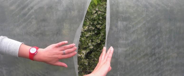 squarcio nella serra 1 coldiretti repertorio (1)