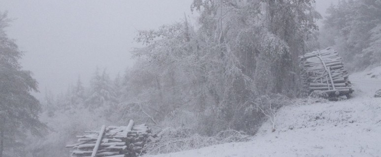campigna neve
