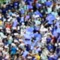 fiorentina bandiere
