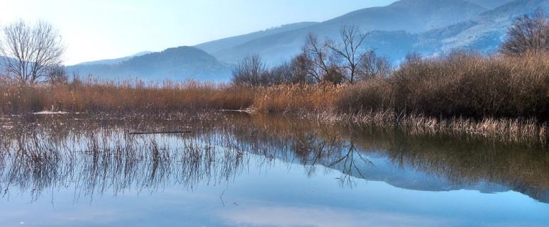 oasi-wwf-bosco-del-bottaccio