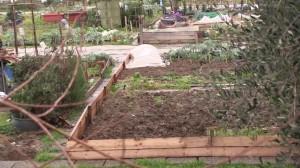 oltre 1,3 milioni piovuti a Calenzano grazie al Bando Periferie
