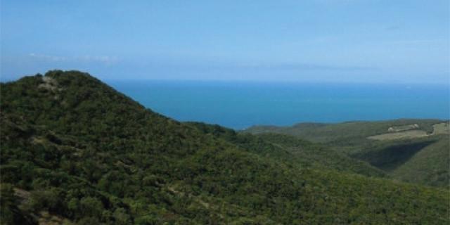 trekking-colline-livornesi