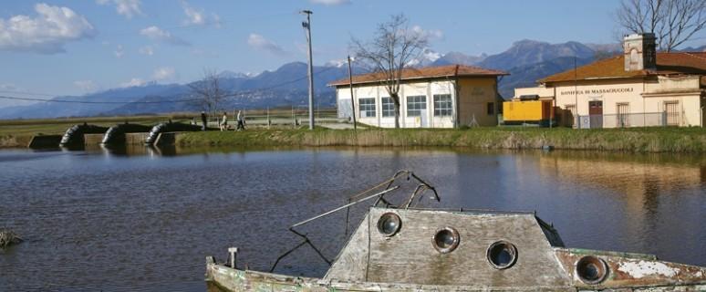 Lago Massaciuccoli1