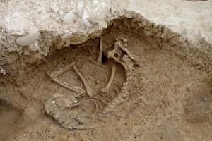 scavi-archeologici-tassignano-cane