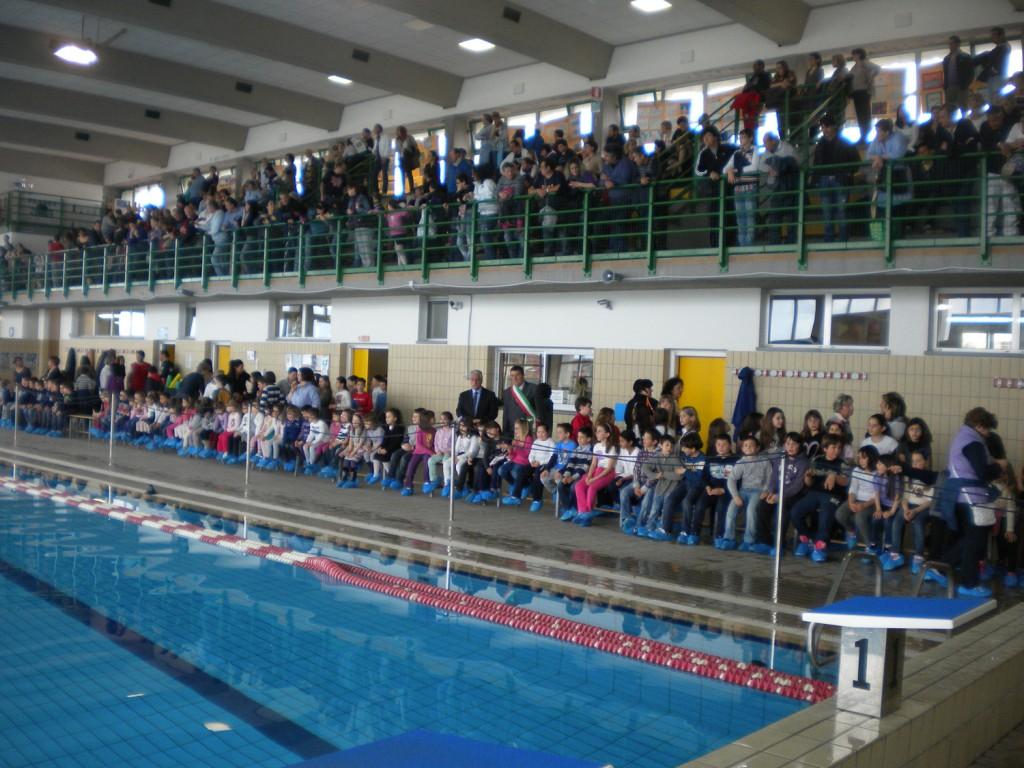 Massarosa concorso - San marcellino piscina ...