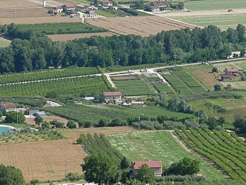 agricoltura-generica13.jpg