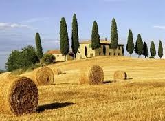 agricoltura_toscana.jpg