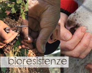 bioresistenze-300x238.jpg