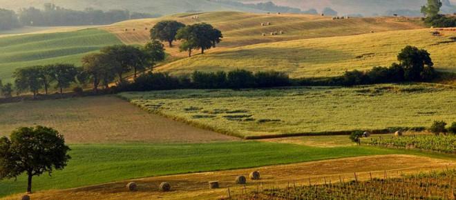 campagna-toscana-panorama-24455245.jpg