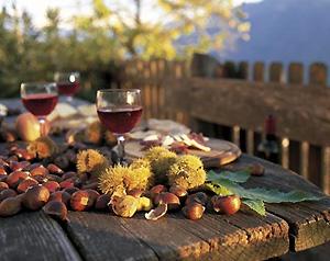 castagne-vino-novello.jpg