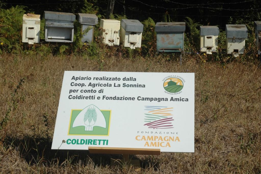coldiretti_apiario_papa_ok.jpg