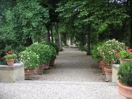 Giardino dei semplici - Il giardino dei semplici ...